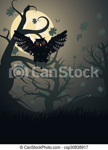 Owl in the Night Forest - csp30838917