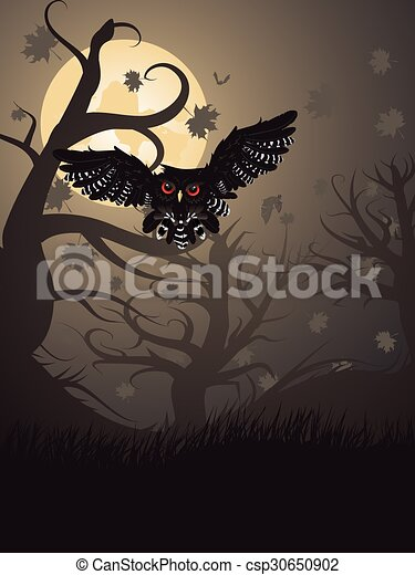 Owl in the Night Forest - csp30650902