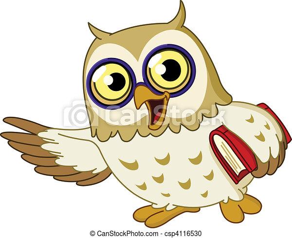 Owl - csp4116530