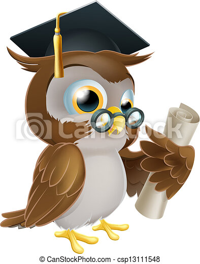 Owl with degree or qualification - csp13111548