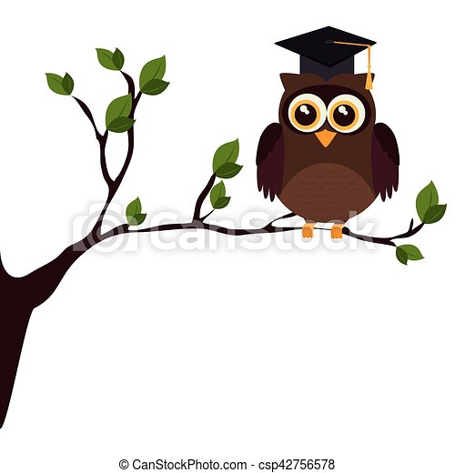 owl with hat graduation - csp42756578