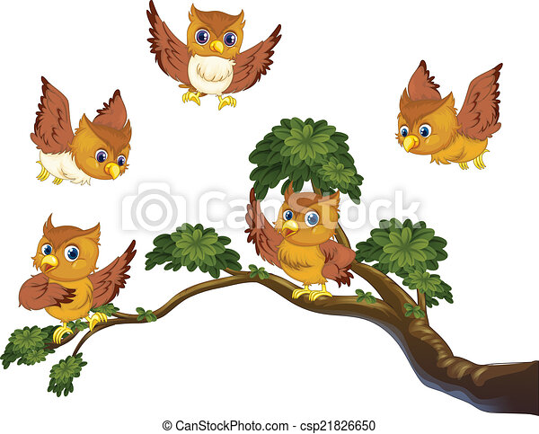 Owls on branch - csp21826650