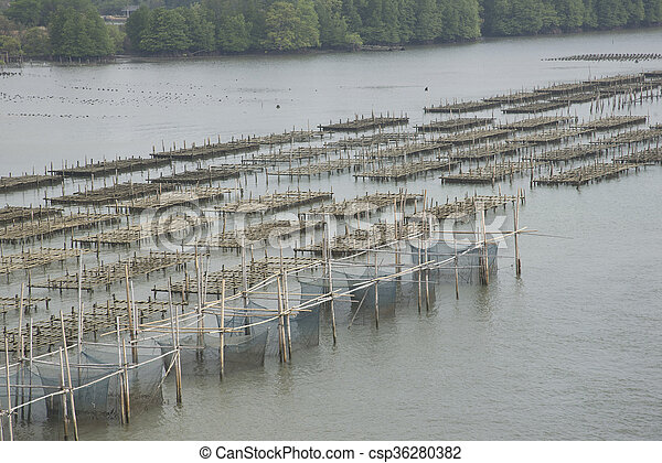 Oyster farm in sea Abstract background - csp36280382