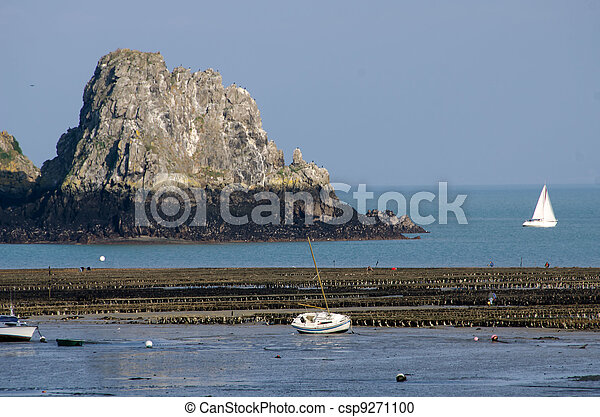 oyster farm in the sea - csp9271100