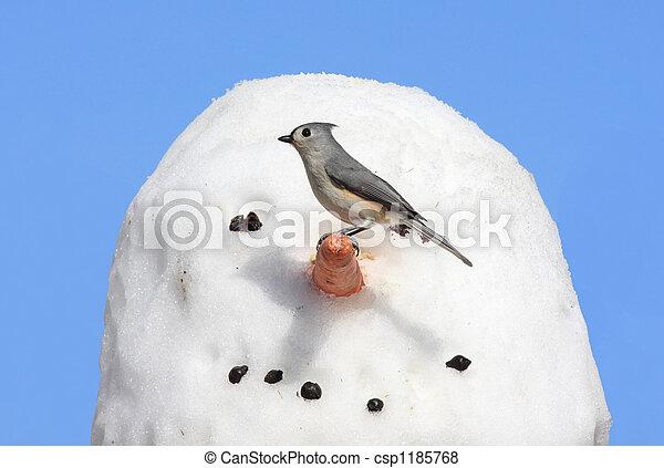 Pájaro en un muñeco de nieve - csp1185768