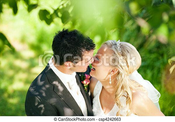 párosít, beállítás, romantikus, esküvő - csp4242663