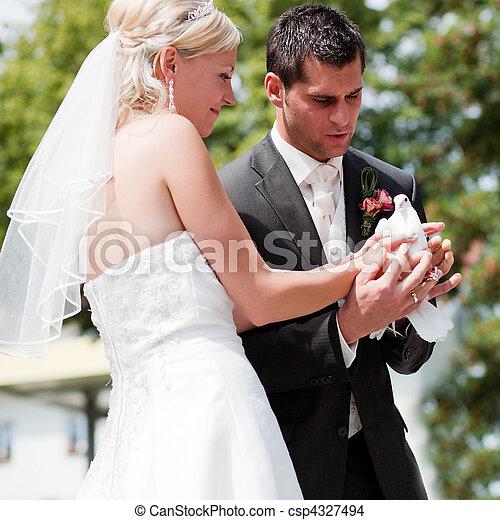 párosít, kéz, galamb, esküvő - csp4327494