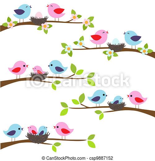 pássaros, família - csp9887152