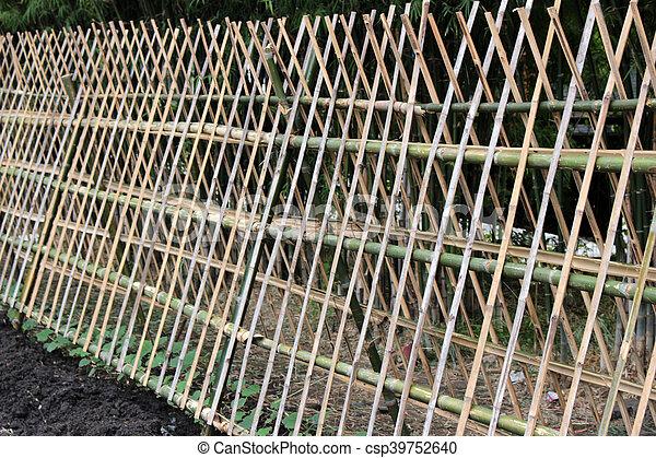 pépinière usine, lierre, barrière, bambou.