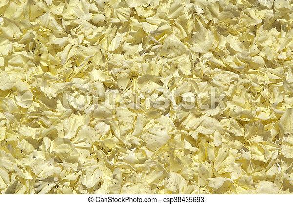 pétales, bis, jaune - csp38435693