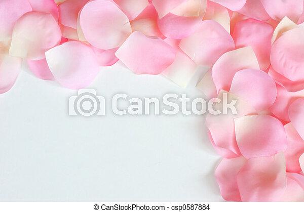 La frontera del pétalo rosa - csp0587884
