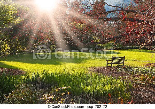 pôr do sol, banco parque - csp1702172