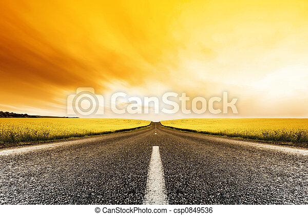pôr do sol, canola, estrada - csp0849536