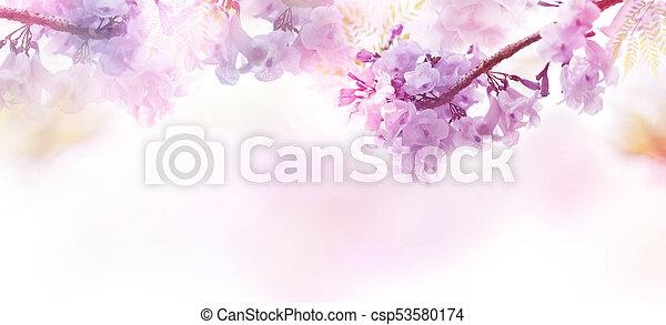Telón floral abstracto de flores púrpura con estilo suave. - csp53580174