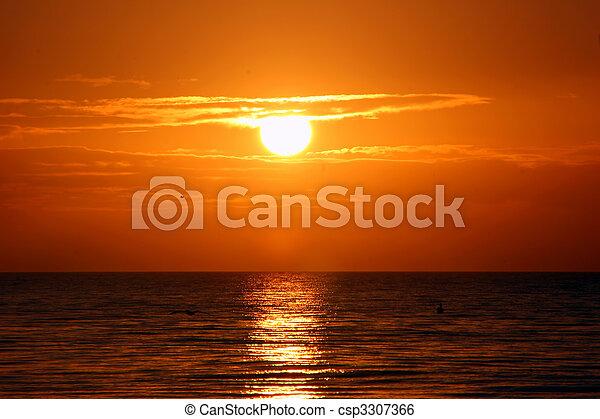 překrásný, ostrov, florida, východ slunce, sanibel - csp3307366