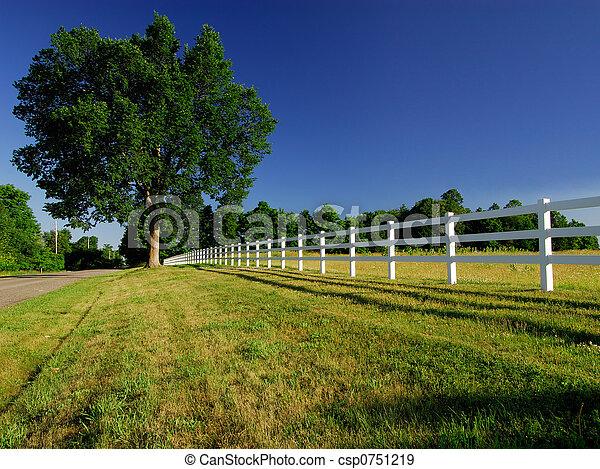 Una cerca de campo - csp0751219