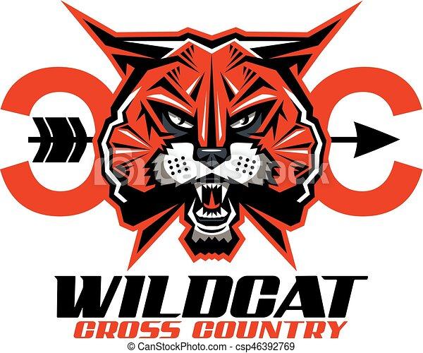 Wildcat cross country - csp46392769