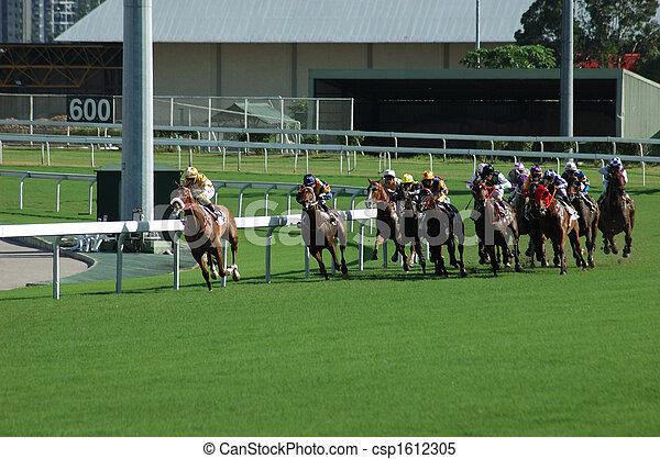paard te rennen - csp1612305