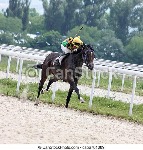 paarde, racing. - csp6781089