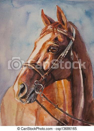 paarde - csp13686165