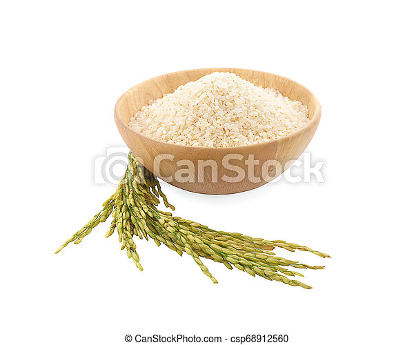 Paddy rice isolated on white background - csp68912560