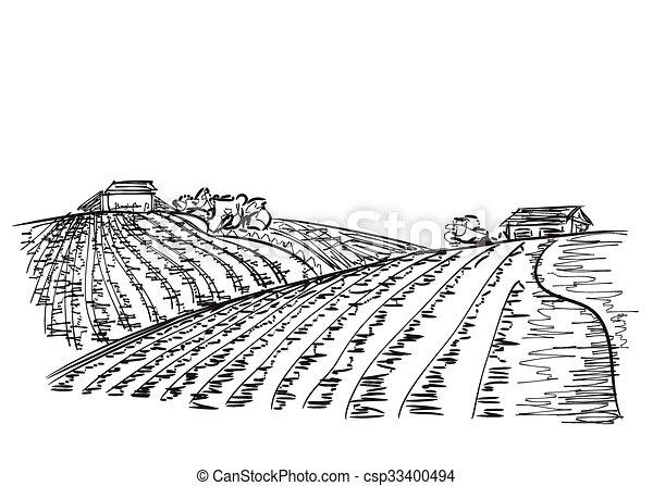 paesaggio, campi - csp33400494