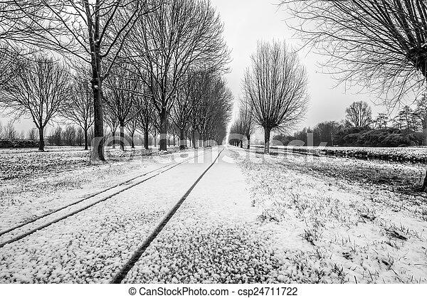 paesaggio inverno - csp24711722