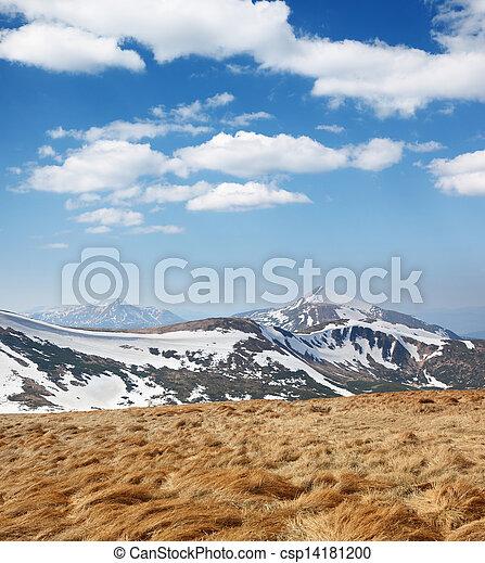 paesaggio montagna - csp14181200
