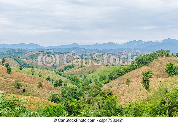 paesaggio montagna - csp17330421