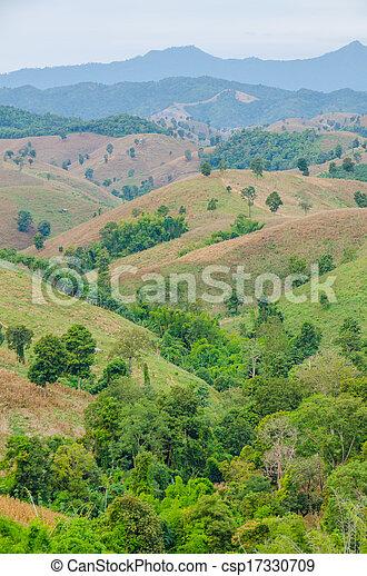 paesaggio montagna - csp17330709