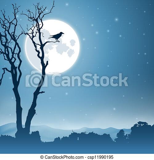 paesaggio, notte - csp11990195