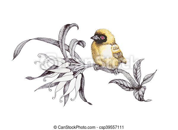 Painted bouquet of garden flowers with bird on white background. - csp39557111