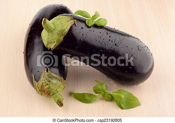 Pair aubergines, eggplants with basil leaves on bright wooden table - csp23192805