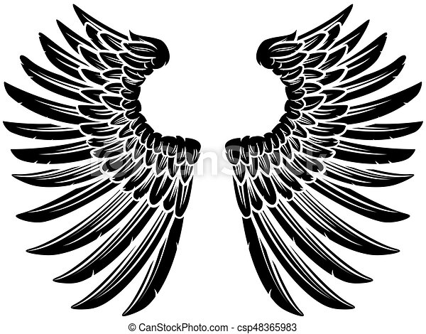 Pair Of Eagle Bird Or Angel Wings Eagle Bird Or Angel Wings Pair