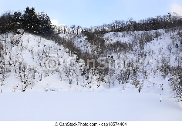 paisagem, árvores inverno, neve - csp18574404