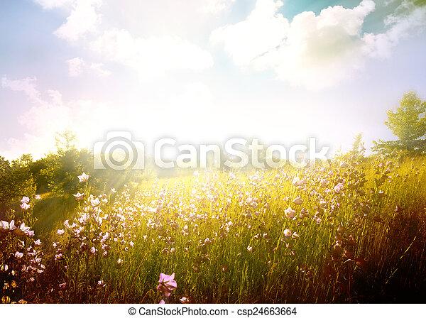 paisagem - csp24663664