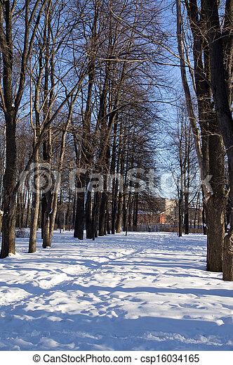 paisagem inverno - csp16034165