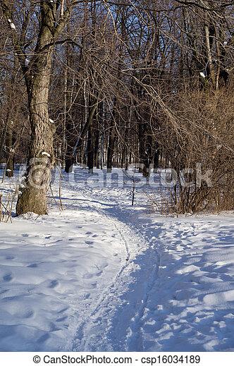 paisagem inverno - csp16034189
