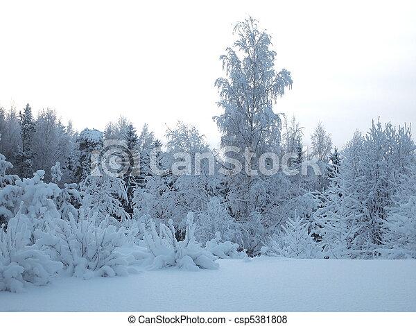 paisagem inverno - csp5381808
