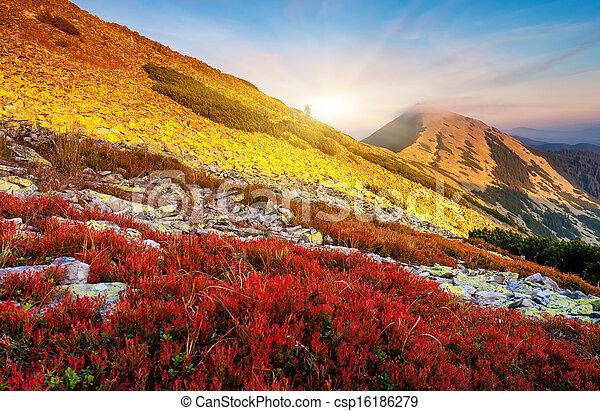 paisagem montanha - csp16186279