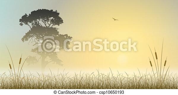 Un paisaje sombrío - csp10650193