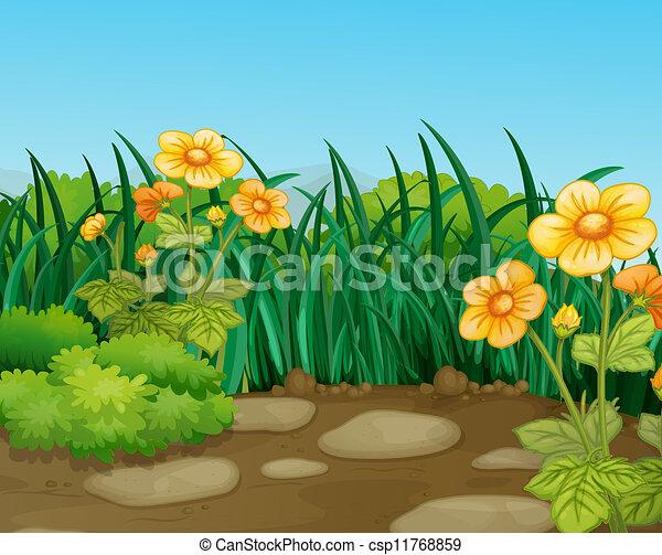 Landscape - csp11768859