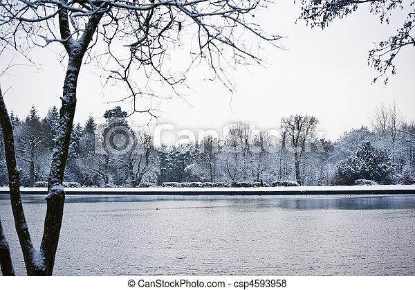 paisaje de invierno, lago - csp4593958