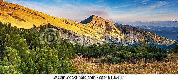 paisaje de montaña - csp16186437