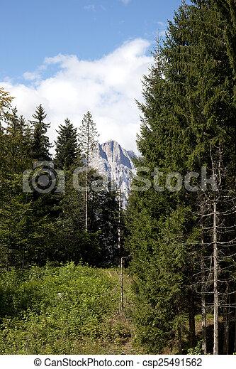 paisaje de montaña - csp25491562