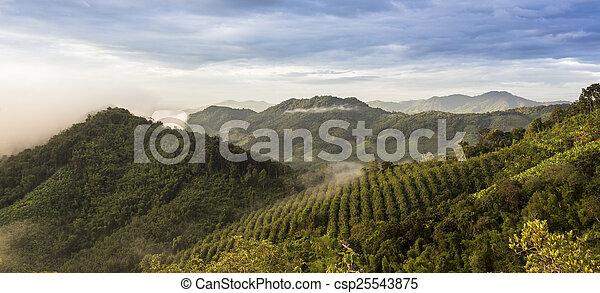 Un paisaje de montaña - csp25543875