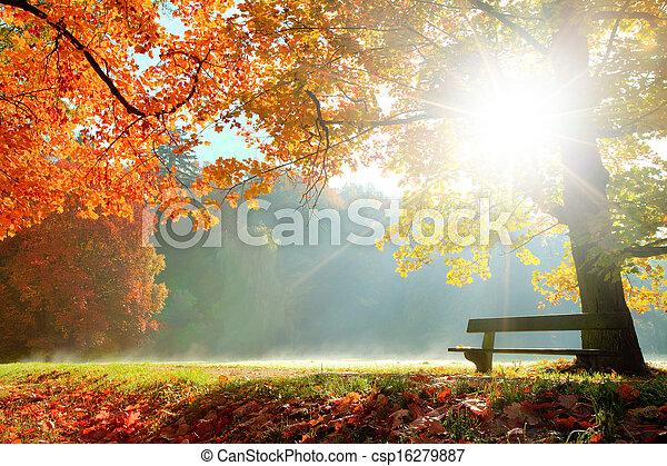 Un paisaje de otoño - csp16279887