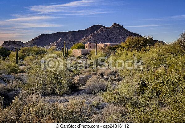 Paisaje del desierto - csp24316112