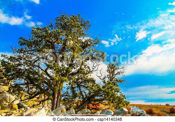 Landscape - csp14140348
