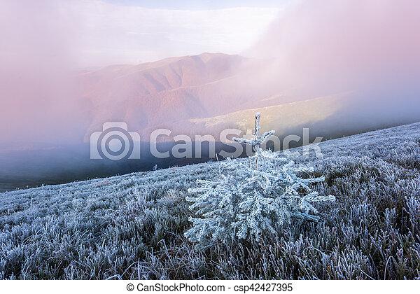 Landscape - csp42427395